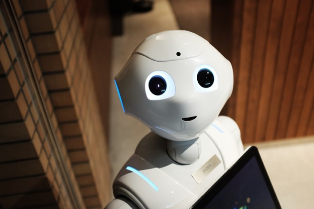 How to Program a Robot Using Python | Artificial Intelligence Talking Robot